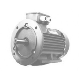 Эл.двигатель PROTON Е-5m