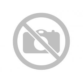 Пистолет РВ4 (PROTON АС) с пластиковой камерой